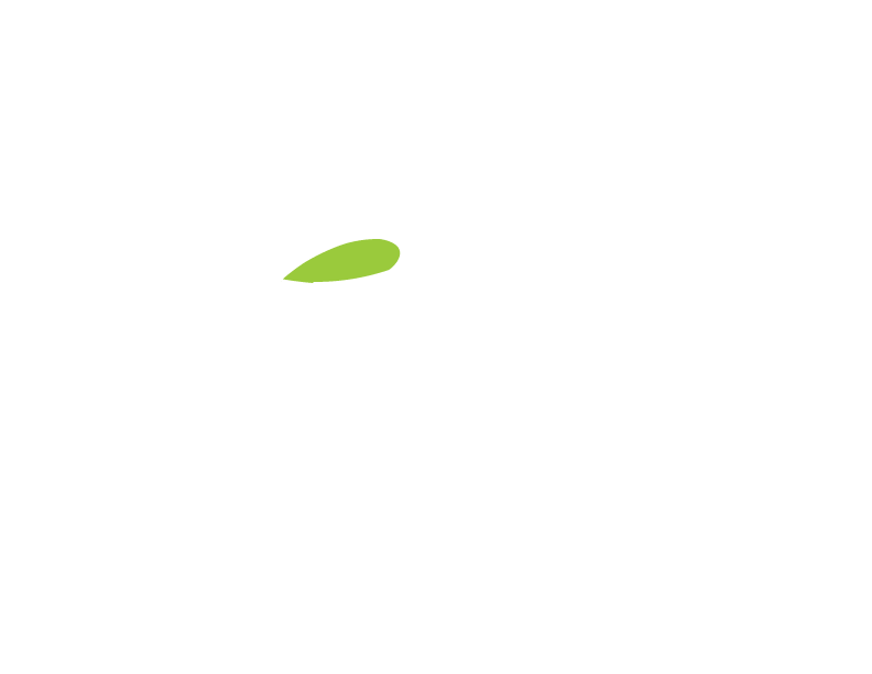 Beauty Loft Spa
